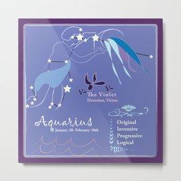 Aquarius February Metal Print