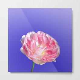 fantastic tulip Metal Print