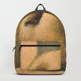 Bathing in sunlight Backpack