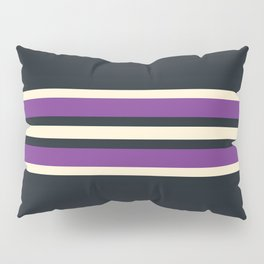 Classic Retro Stripes Asagi Pillow Sham