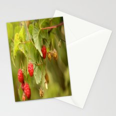 Sweet Raspberries  Stationery Cards