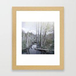 Print 48 Framed Art Print