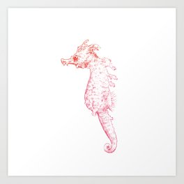 Seahorse II Art Print