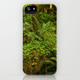 In The Cold Rainforest iPhone Case