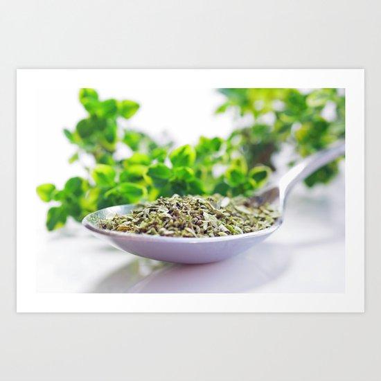 Kitchen Herbs Thym Art Print