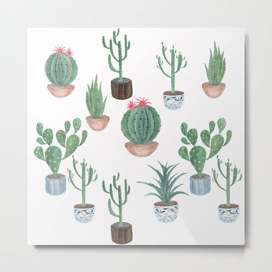 Cacti. Metal Print