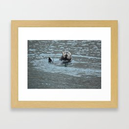 Sea Otter Fellow Framed Art Print
