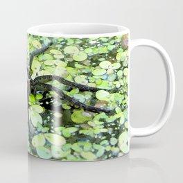 Watercolor Spider, Fishing Spider 01, Merchant's Millpond, North Carolina, Don't Move! Coffee Mug