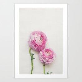 Pink Peonies 2 Art Print