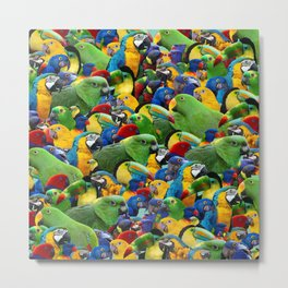 Parrots collage birds photo print parrots pattern green blue red yellow Metal Print