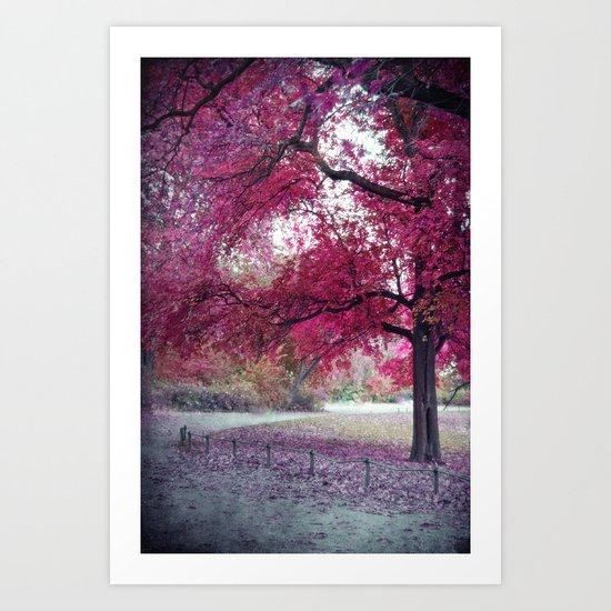 Pink Sunday Art Print