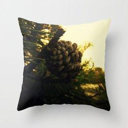 cone Throw Pillow