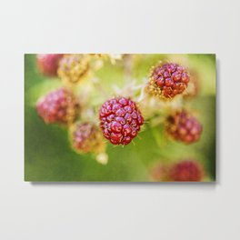Wild berries #7 Metal Print