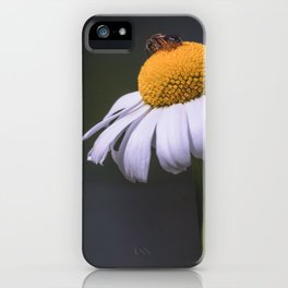 On Top of the World - Fine Art Flower iPhone Case