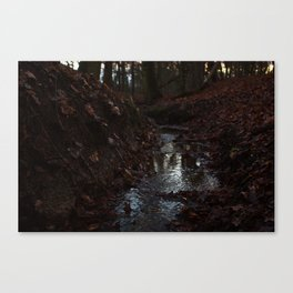 Red Stream Canvas Print