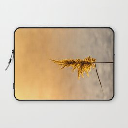 Reed tip in Camargue Laptop Sleeve