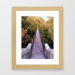 Spruce Street Suspension Bridge Framed Art Print