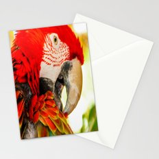 Scarlet Macaw Parrot Stationery Cards