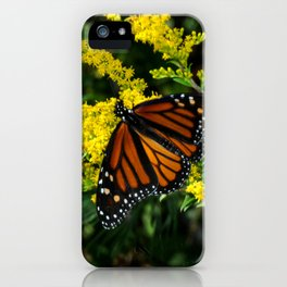 Butterfly on Goldenrod iPhone Case