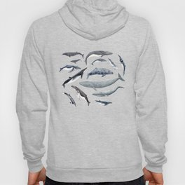 Whales all around Hoody