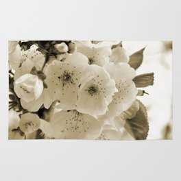 Cherry Blossoms Monochrome Rug