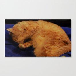 Aren't I cute! Canvas Print