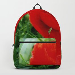 red flower - poppy Backpack