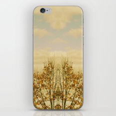 Elevation iPhone & iPod Skin