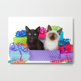 Kittens Surprise Birthday Party Metal Print