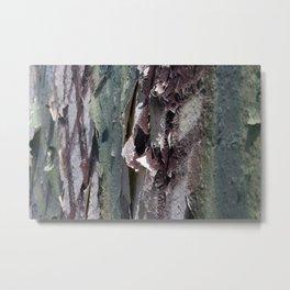 Landscape 3310C Metal Print