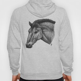 Przewalski's Horse Hoody