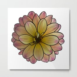 Yellow & Pink Dahlia Metal Print