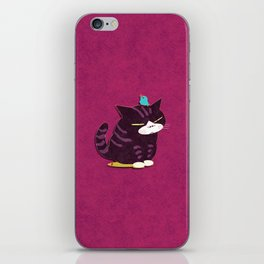 cat and bird iPhone Skin