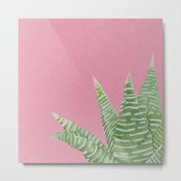 Watercolor Aloe Plant on Pink Metal Print