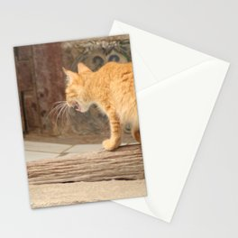 Cuban Street Cat Tiger Stationery Cards