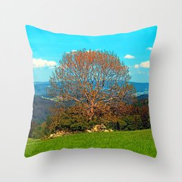 Lonely old tree in springtime scenery Throw Pillow