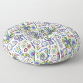 Ernst Haeckel Rainbow Diatoms Floor Pillow