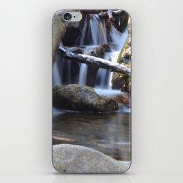 Small waterfall away from Cascade Falls iPhone Skin