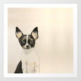 Chihuahua - the tiny dog Art Print