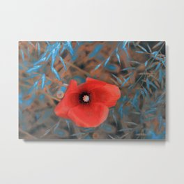 Poppies(blue glow). Metal Print