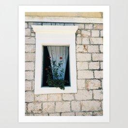 European Window Art Print