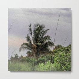 The Wild Palm Tree Metal Print