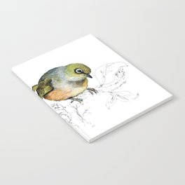 Sylvereye - Waxeye bird Notebook
