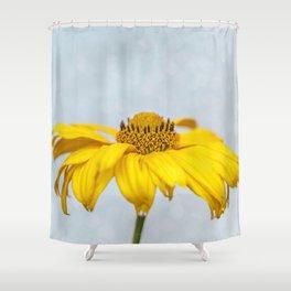 Rain Drops on Daisy Shower Curtain