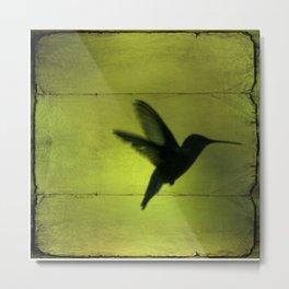 Neon Green Hummingbird behind the Blinds by CheyAnne Sexton Metal Print