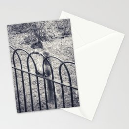 The Lonely Squirrel Stationery Cards