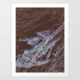 autumn breathes with winter Art Print