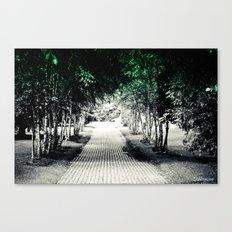 Where does the path lead? Canvas Print