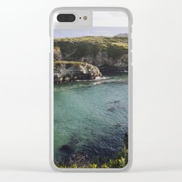 Point Lobos, California Clear iPhone Case