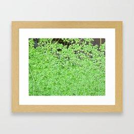 Floating Nature Framed Art Print